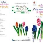 festa-dei-fiori-150x150