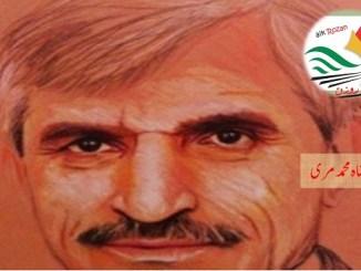 Dr Shah Muhammed Marri