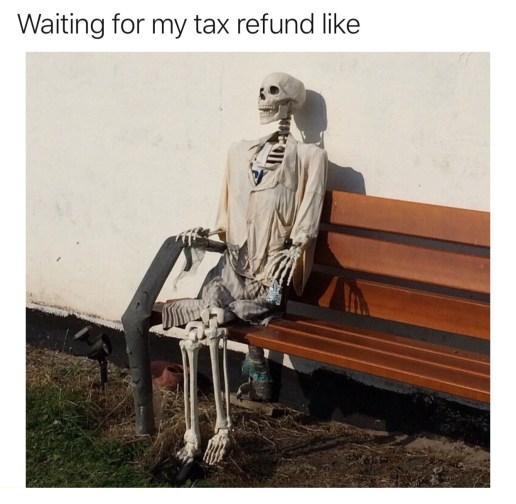 Nicholas Aiola, CPA - Tax Time Meme Dump - Skeleton on Bench