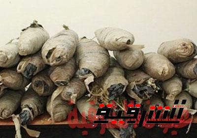 ضبط عاطل وبحوزتة 19 لفافة من نبات البانجو بكفر صقر