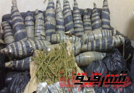 سقوط تاجر مخدرات من التل الكبير فى يد مباحث بلبيس وبحوزته 60 كيلو بانجو !