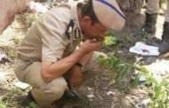 سقوط عاطل الصنافين في قبضة مباحث منيا القمح