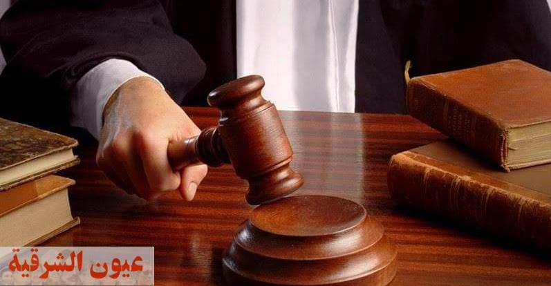 السجن المشدد ١٠ سنوات للشقيقين المشاغبين بالشرقية