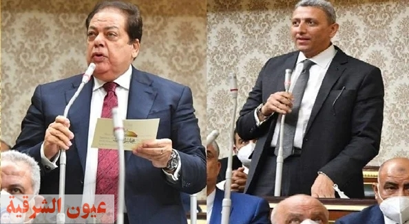 المستشار أحمد سعد الدين والنائب محمد أبو العينين وكيلين لمجلس النواب
