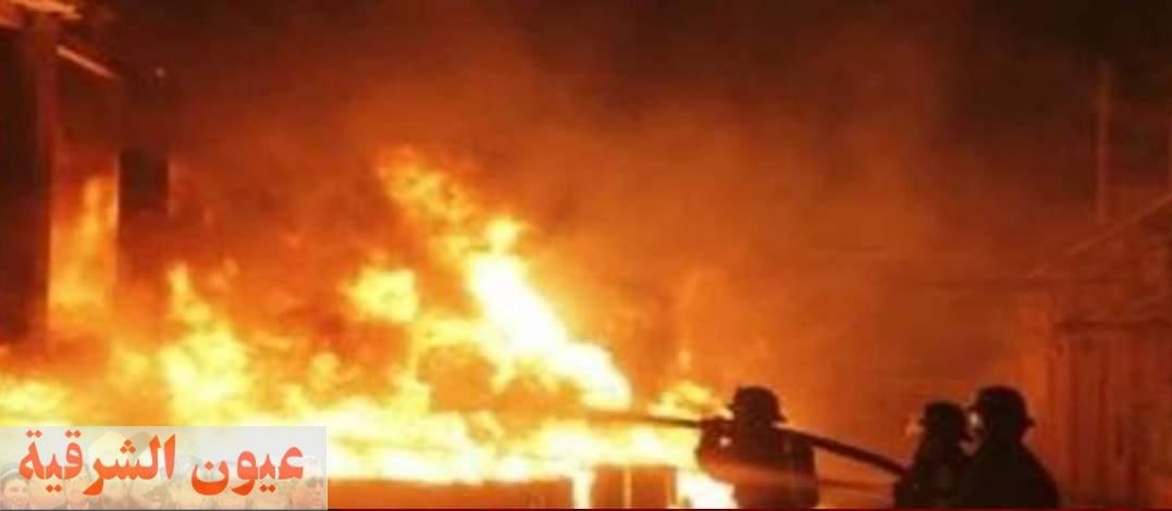 نفوق 4 مواشي في حريق بمزرعة بقرية شيبة بالزقازيق