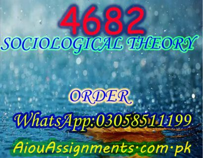 4682 SOCIOLOGICAL THEORY MSc Sociology Spring 2019