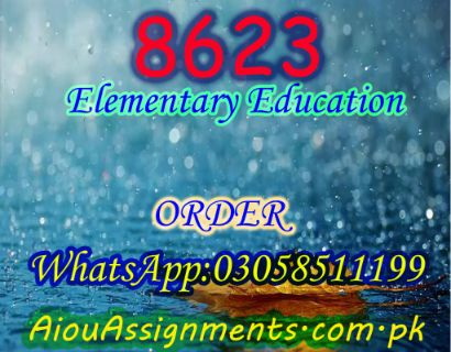 8623 Elementary Education Bed Spring 2019