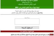 لينك مباشر موقع نتائج شهادة التعليم الابتدائي 2021 cinq onec dz السانكيام