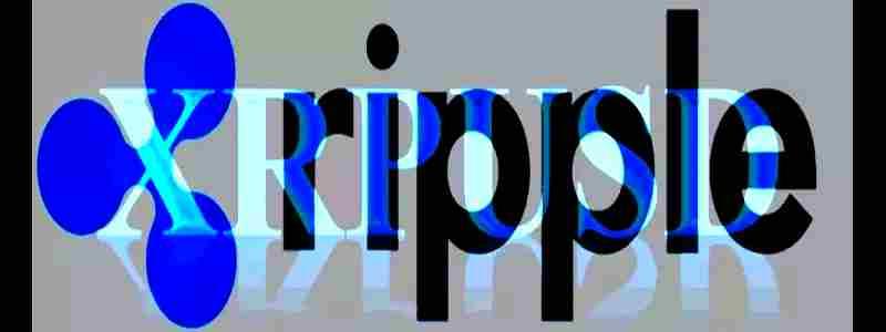 Ripple - svetimas tarp savų ir savas tarp svetimų