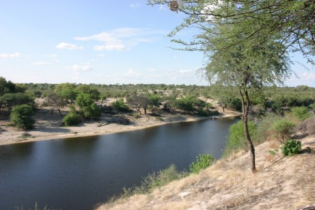 Boteti River towards Makgadikgadi Pans National Park