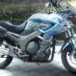 Yamaha DTM900