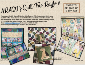 Description and Photos of Quilts Being Raffled