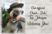 Tai Johnson is the offical Chair-Dale of the 2019 Aire Faire