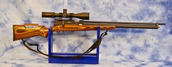 PBBA Pro Air Rifle