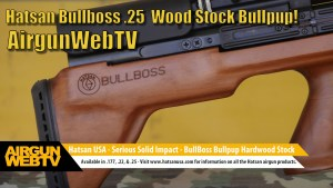 Hatsan BullBoss Wood Stock 25 cal