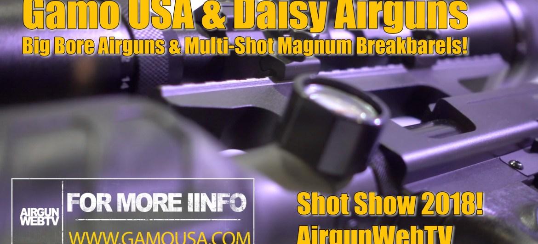 Gamo and Winchester Big Bore Airguns