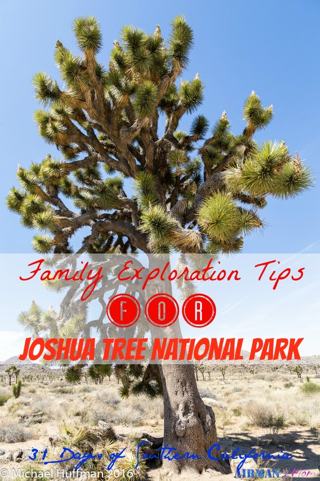 Joshua Tree National Park is a great place to go hiking and exploring with your family. A little dry and dusty, but a great spot for sure.