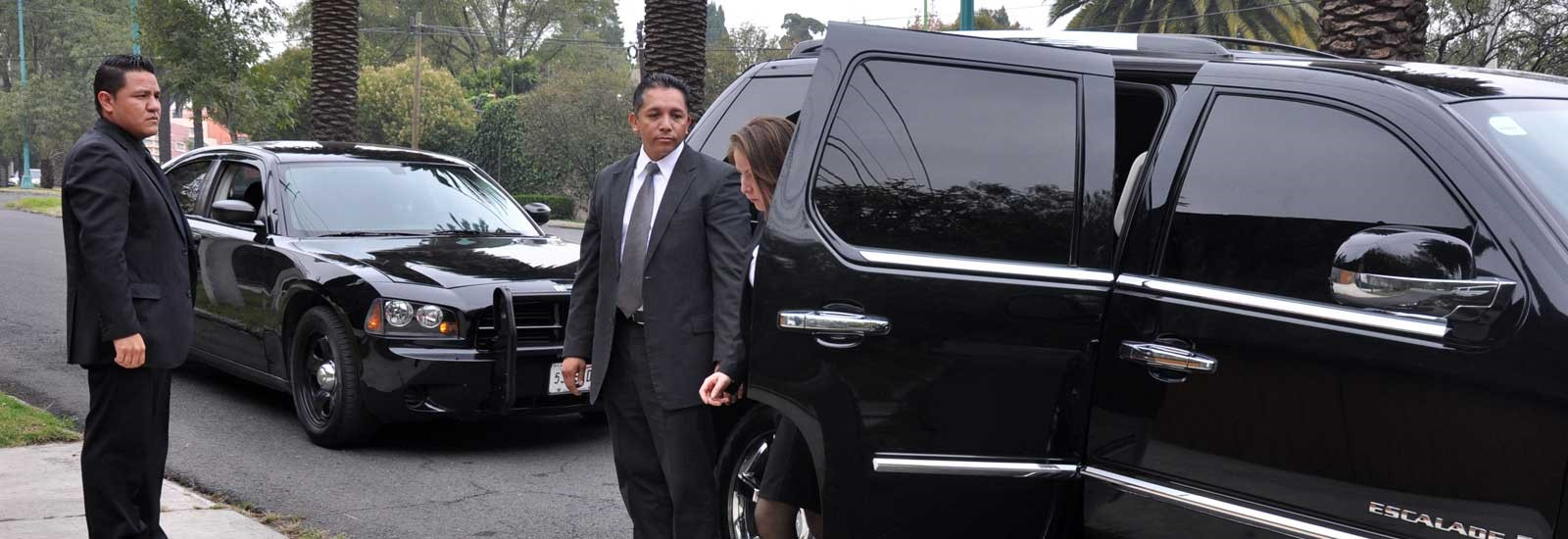 Protection Celebrity Vip Security Services