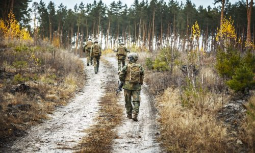 Norwegian Rapid reaction special forces FSK soldiers in field uniforms patrolling forest road
