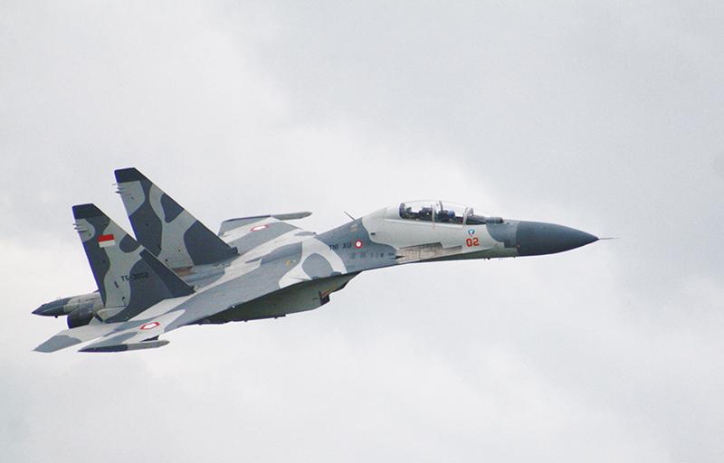 Su-30MK TS-3002_Roni Sontani