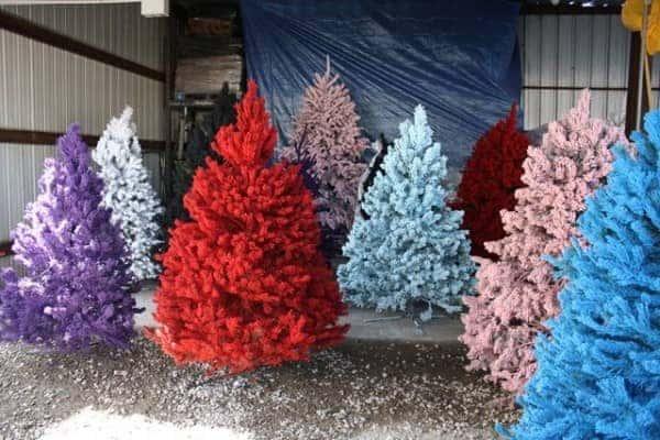 sprey boya-yılbaşı ağacı