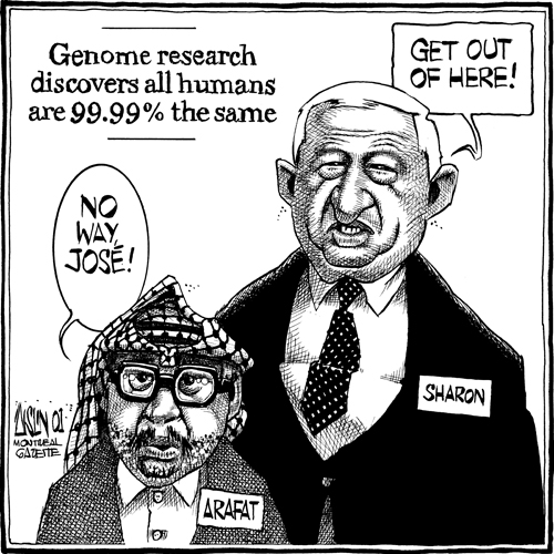 Aislin cartoon showing Arafat and Sharon not liking results of genome research that shows that all humans are 99.99% identical.