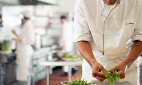 Chef Using Dill --- Image by © Tim Pannell/Corbis