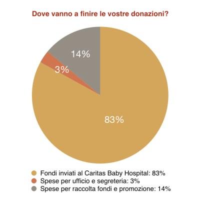 grafico trasparenza uso donazioni aiuto bambini betlemme onlus
