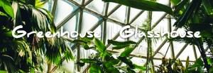 imagen destacada greenhouse