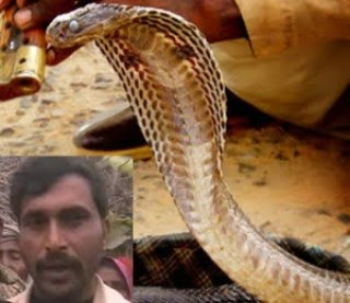Real Hindi Snake Story , Kahani,