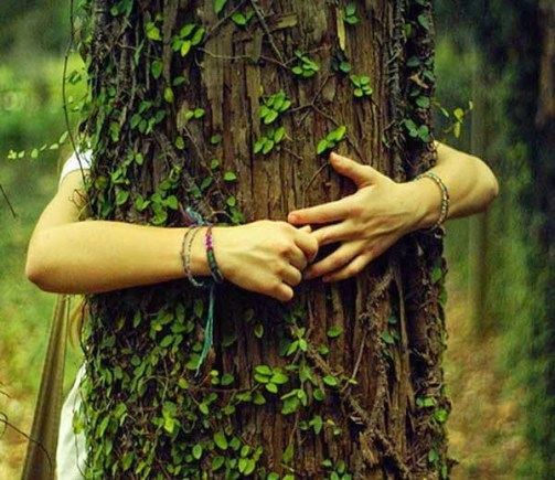 Getting Married To A Tree