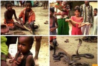 Indian Snake Village Story in Hindi