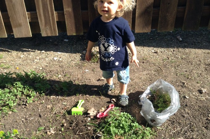 Family Garden Project