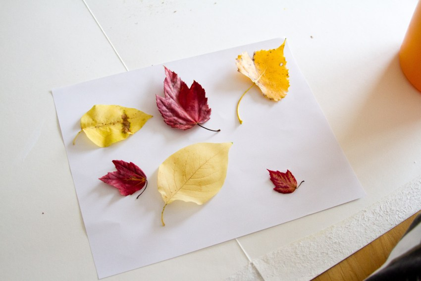 leafpainting-3