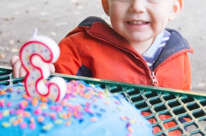 Nathan's Third Birthday