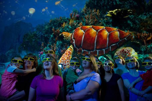 Turtle Trek Key Visual Glasses