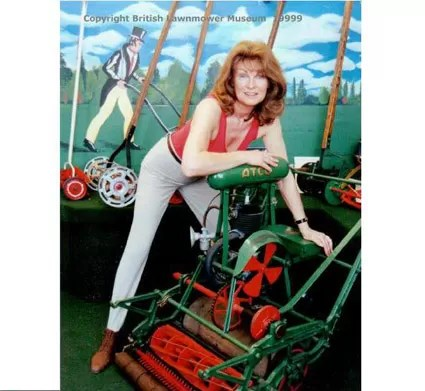 Lawnmower world