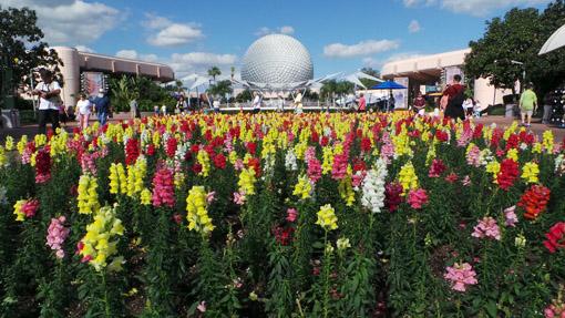 epcot-international-flower-and-garden-festival