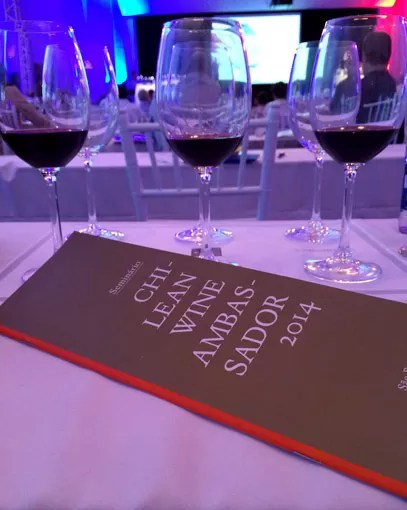 Chilean Wine Ambassador