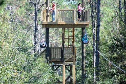 Orlando Tree Treck