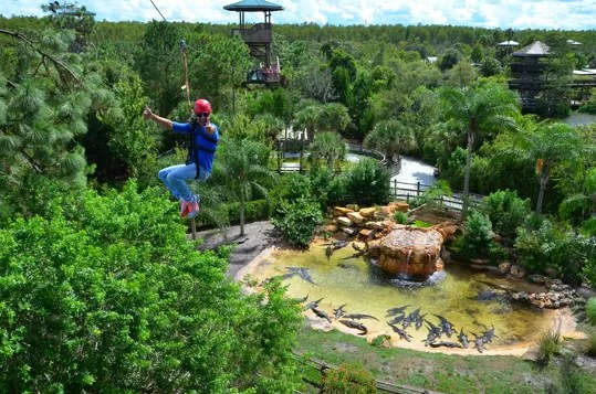 Gatorland Screamin' Gator Zip Line at Gatorland