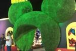 Disney Expo