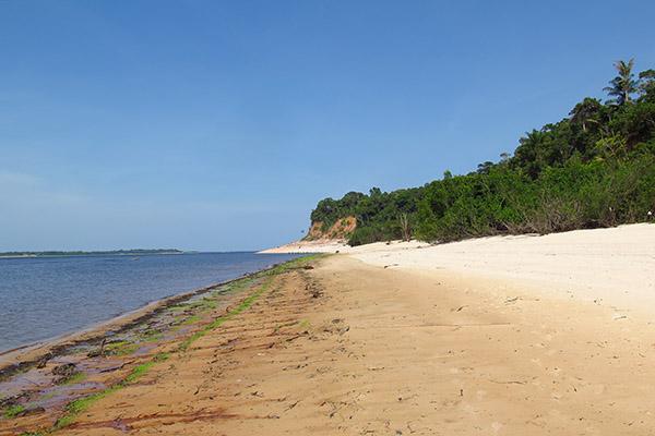 Praia de rio na Amazonia