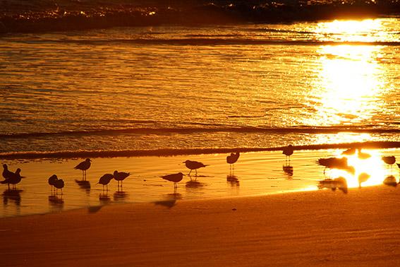 Daytona Beach - Por do sol