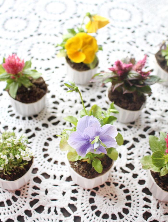 cupcake flower pots for mother's day. Cute way to package flowers for gifts or party favors   A Joyful Riot