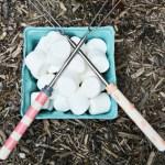 Custom Marshmallow Picks