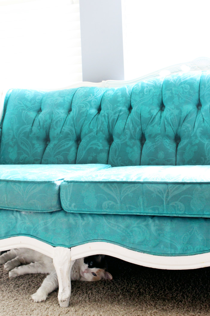 My new house updates with a fun vintage turquoise couch, gray walls and kitties! | A Joyful Riot