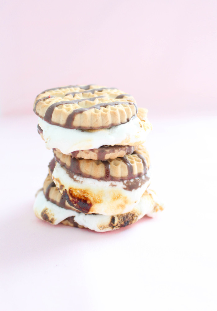 6 unique, colorful and delicious ways to make a s'more | A Joyful Riot-4
