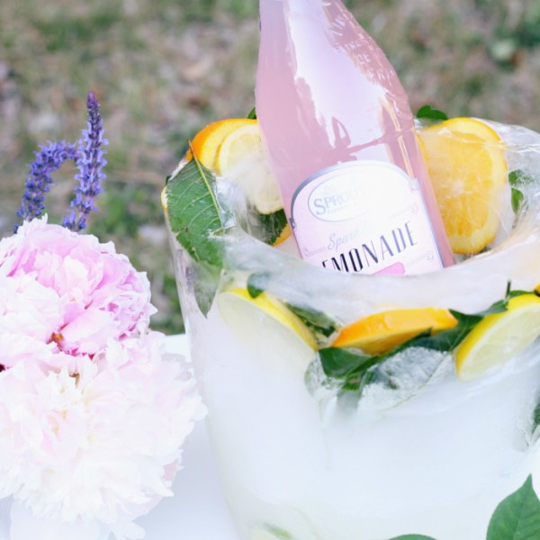 DIY Citrus Ice Bucket