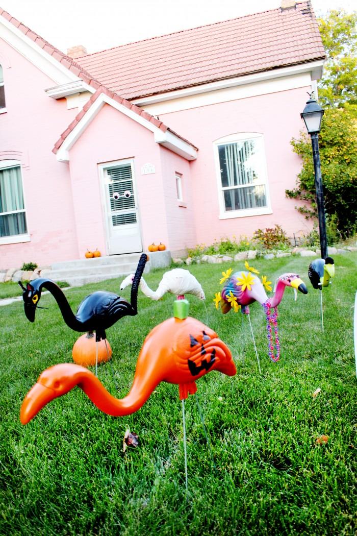 Halloween lawn flamingos in costume